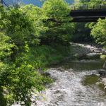小さな小さな山村を花再生で「日本一美しい村」